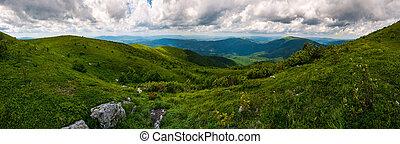 grassy hillside of Carpathians on overcast day. gorgeous...