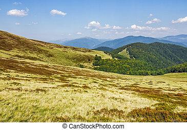 grassy hillsides on mountain ridge. fine autumn weather in...