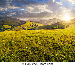 grassy meadow in mountains at sunset