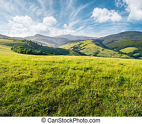 grassy meadow in mountains. beautiful summer countryside...