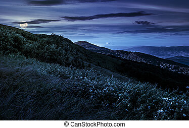 grassy meadow on a hillside at midnight. mountain landscape...