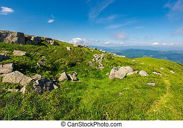 beautiful summer scenery in wonderful weather - grassy...
