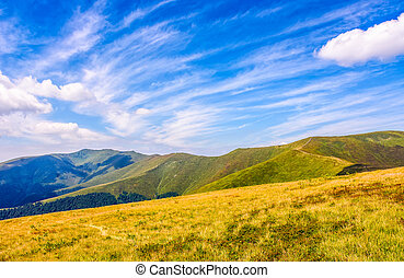grassy meadow on hillside of mountain ridge