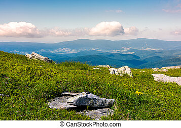 grassy meadow with boulders on hillside. beautiful landscape...