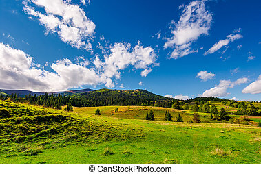 grassy meadows and forested hills. beautiful landscape with...