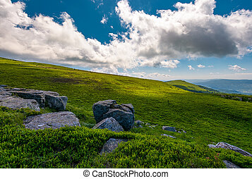 grassy meadows of Runa mountain. beautiful summer landscape...