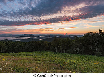 Grassy Mountain Field Overlooking Foggy Falley at Sunset