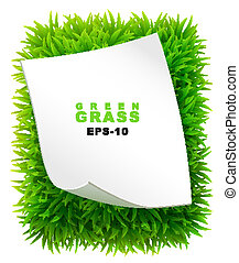 Grassy rectangle with a clean sheet of paper