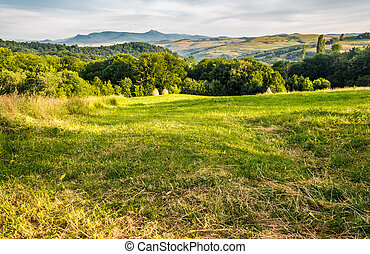 grassy rural field in mountains. haystack a the end of...