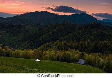 grassy rural slope at dusk