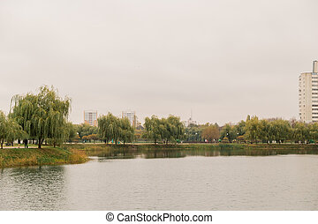 Grassy shore of the lake with residential buildings in the distance, on a cloudy day, autumn weather.