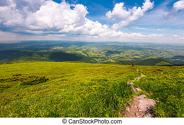 grassy slope of Pikui mountain in summer time. beautiful...