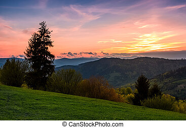 grassy slope rural area at sunset. beautiful mountainous...