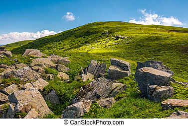 grassy slope with boulders in summer