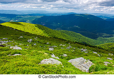 beautiful summer landscape of Carpathians - grassy slope...