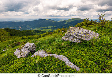 grassy slopes of Carpathian mountains. huge boulder on the...