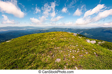 grassy slopes of mountain ridge in afternoon - grassy slopes...