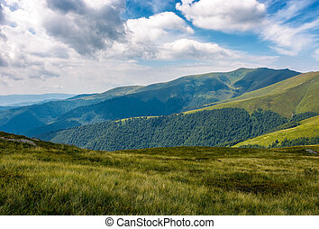 grassy slopes under the cloudy sky - grassy slopes of...