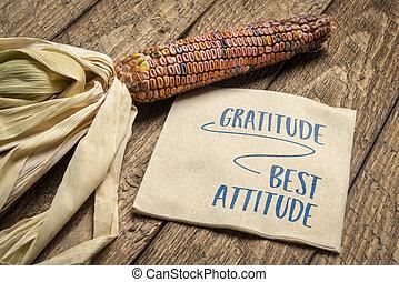 gratidute - best attitude, inspirational quote