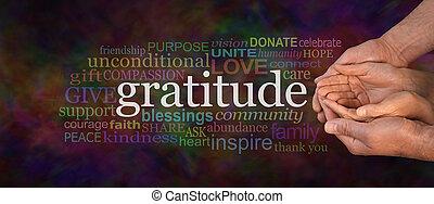 Gratitude Attitude Website Campaign Banner