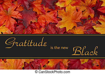 Gratitude Message