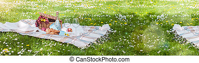 gratuite, herbe, pique-nique, espace, bannière, format., text., air., week-end, park., vert, long, space., copie, ouvert