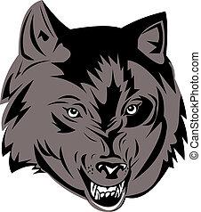 graue , wolf\'s, kopf, knurren