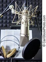 gravando, microfone, condensador, sala, vocal