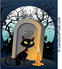 grave with a black cat in the night