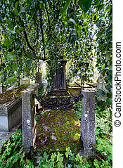 Grave with moss