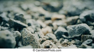 Gravel covered ground. Travelling macro shot on Red camera...