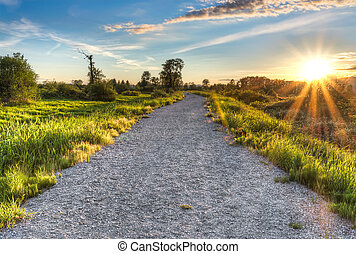 Gravel Path with Setting Sun Star - Setting sun star with...