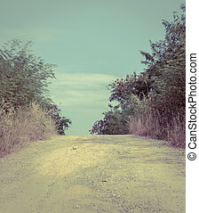 Gravel road between trees in the countryside