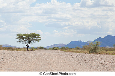 Gravel road in Namibia