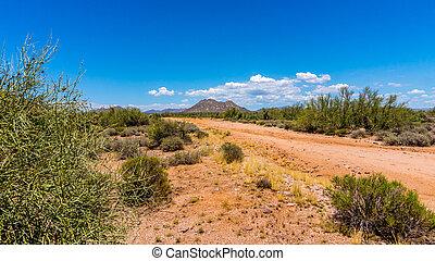 Gravel Road in the Arizona Desert