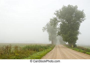 gravel road in the morning mist