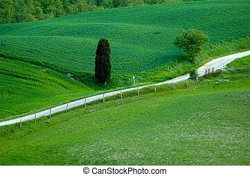 Gravel road in Tuscany