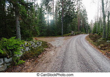 Gravel road through the woods