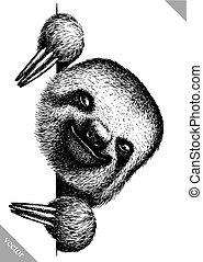 graver, paresse, vecteur, isolé, noir, blanc, illustration