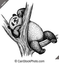 graver, vecteur, isolé, noir, blanc, illustration, panda