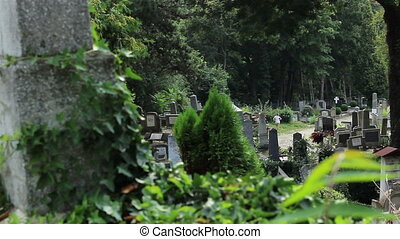 Graves in Cemetery View - Graves and tombstones of various...