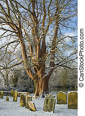 Graveyard - North Yorkshire - England