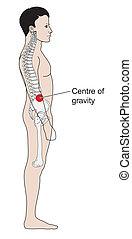 gravidade, human, centro