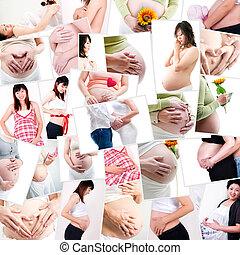 gravidez, conceito