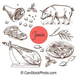 gravura, carne, vindima, carne, ilustração, carne, jamon, menu, style., spices.