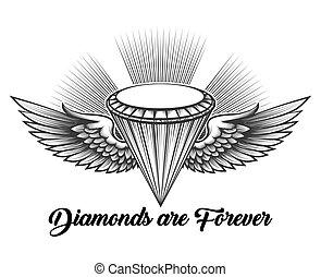 Diamante Asas Feito Pretas Isolado Asas Diamantes