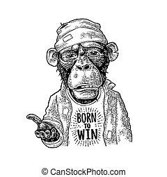 gravura, lettering, begging., vindima, nascido, win., pretas, macacos