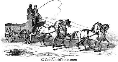 gravura, vagão, vindima, 4, cavalos, 4-wheeled, desenhado