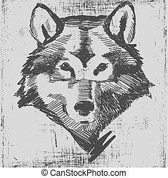 gravure, hoofd, grunge, schets, textuur, hand, stijl, wolf, ...
