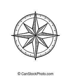 gravure, illustration., vendange, compas, isolé, arrière-plan., vecteur, rose, blanc